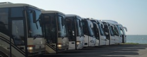 Anchor Tours: Our Services
